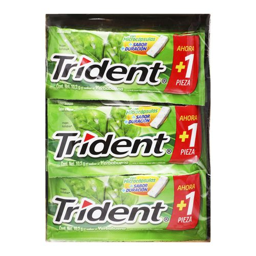 CHICLE-ADAMS-TRIDENT-WHITE-YERB-SLAB-1P---ADAMS